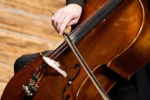 String Chamber Ensembles