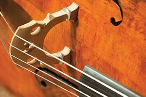WSU Honor Orchestra Festival