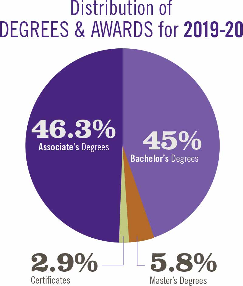 Pie graph of degrees distributed in 2019-20.