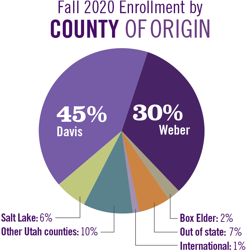 Pie graph of fall 2020 enrollment by county of origin.