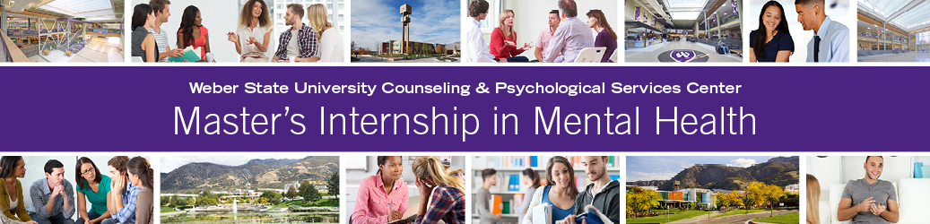 Clinical Mental Health Counselor Internship