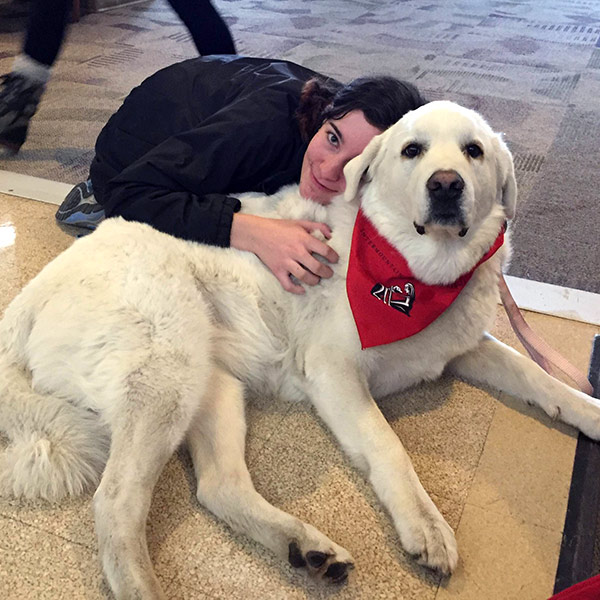 therapy dogs and student