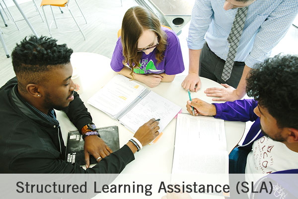 Structured Learning Assistance