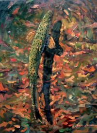"John Collins, ""Trout at Big Springs,"" 2003, oil, 16"" x 20"""