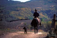 cowboy and dog
